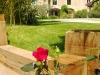 Le Jardin - Le Coing des vignes